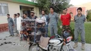 وقتی «مرغ دزدان» سر تراشیده میشوند، دزدان میلیارد دالری باید اعدام گردند!